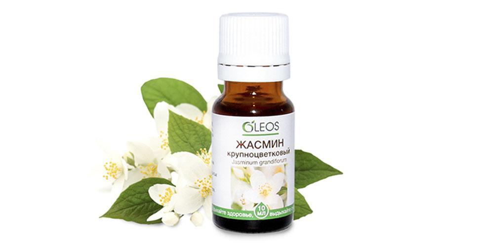 Кому подходит эфирное масло жасмина, свойства и применение для разных типов кожи