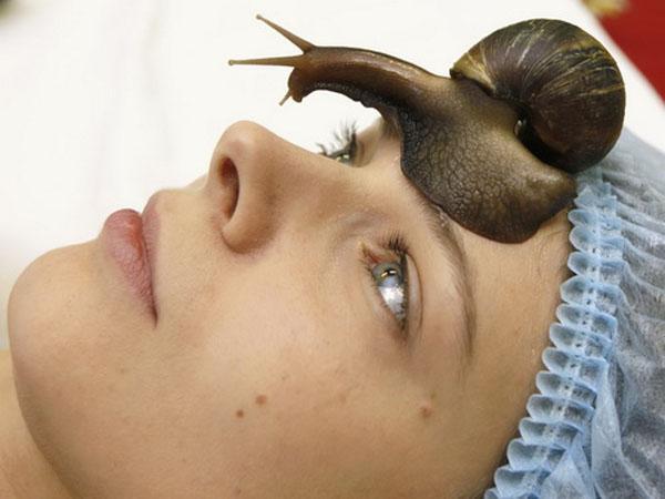 Улитки для омоложения лица - эффективная процедура для кожи