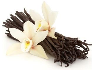Эфирное масло ванили – свойства и применение ванильного масла для волос, лица, тела